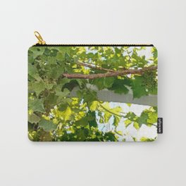The Vid Carry-All Pouch
