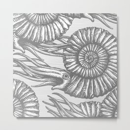 AMMONITE COLLECTION GRAY Metal Print
