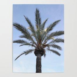 Palma - Matteomike Poster