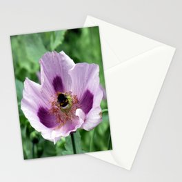 Poppy and Bee Stationery Cards