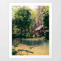 Poisson Palace Art Print