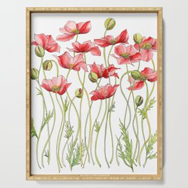 Red Poppies, Illustration Serving Tray