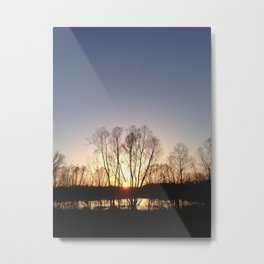 WL fairview Metal Print