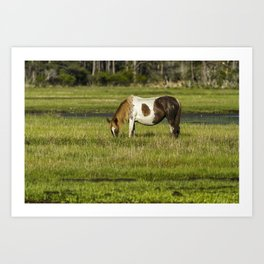 Pinto Mare with the Copper Colored Mane No. 1 - Chincoteague Ponies Assateague Horses Art Print