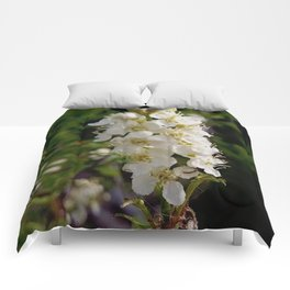 Blooming Chokecherry Stalk Comforters