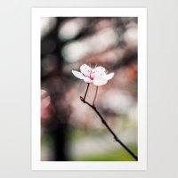 sakura Art Prints featuring Sakura by Le Arcara