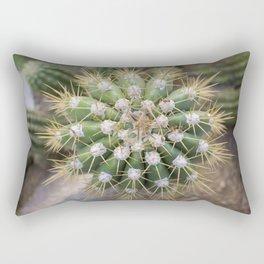 Cactus Closeup Rectangular Pillow
