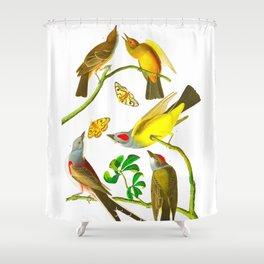 Vintage Scientific Bird Butterfly & Floral Illustration Shower Curtain