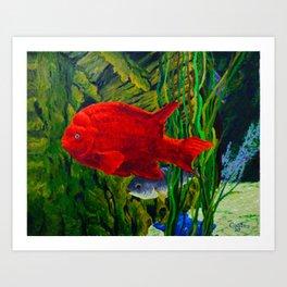The Red Garibaldi Art Print