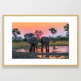 African Elephants At Sunset Framed Art Print