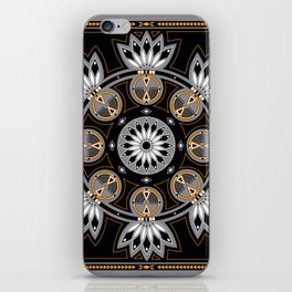 Thunderbird (Eagle) iPhone Skin