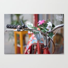 Flowers in the bicycle Canvas Print