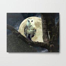 Barn Owl Bird Moon Modern Country Decor Farmhouse Art A497 Metal Print