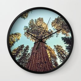 The Largest Tree in the World Wall Clock