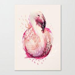 plameniak Canvas Print