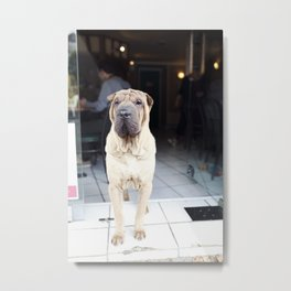 French Cafe Pooch Metal Print