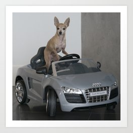 Doggy Driving Art Print