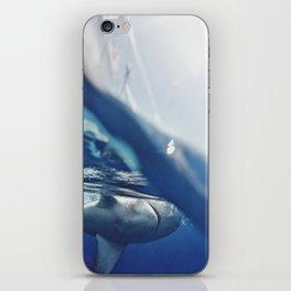 Shark on the Surface iPhone Skin