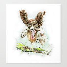 Springing Spaniel Canvas Print