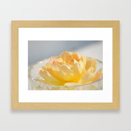 Yellow Rose in Crystal Bowl Macro Floral Photography Framed Art Print
