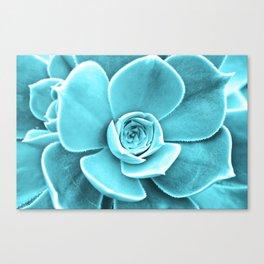 Succulent Southwest Canvas Print