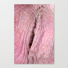Personal Space 1 Canvas Print