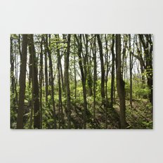 Near the Rope Swing Canvas Print