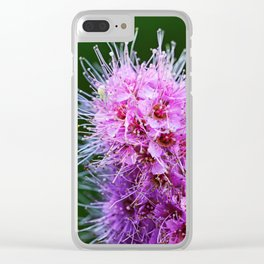 Beauty Home Of The Little Spider Clear iPhone Case