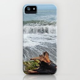 Sea and driftwood mix it up iPhone Case