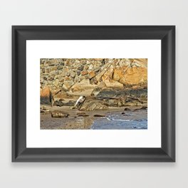A Good Day to be a Gog Framed Art Print