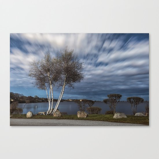 Birch tree by the pond Canvas Print
