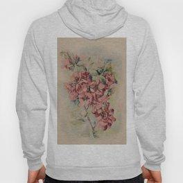 Flowering Japanese quince 2 Hoody