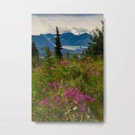 Alaskan Glacier & Fireweed Metal Print