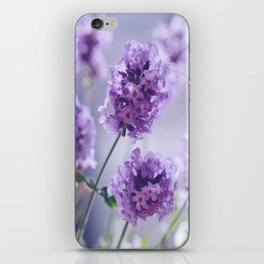 lavender Purple iPhone Skin
