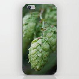 Humulus lupulus, the Common Hop iPhone Skin