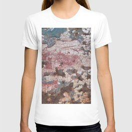 Cracking Paint and Rust Abstract T-shirt
