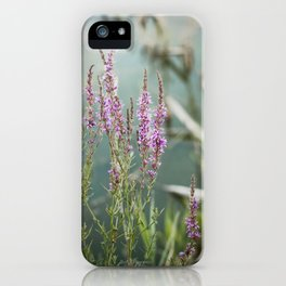 Lakeside Colors iPhone Case