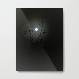 Moonlit Shadows Metal Print