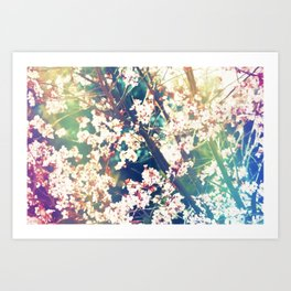 Color 153 Art Print