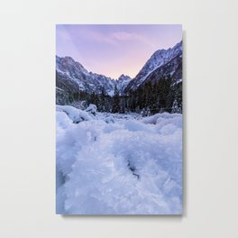 Frozen foliage and mountains at sunset Metal Print