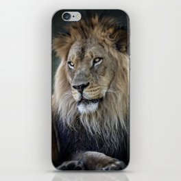 In the Jungle, the Mighty Jungle iPhone Skin