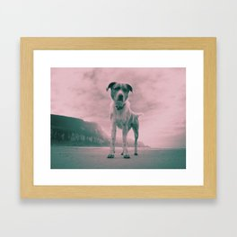 Dog on beach. What's your name? Framed Art Print