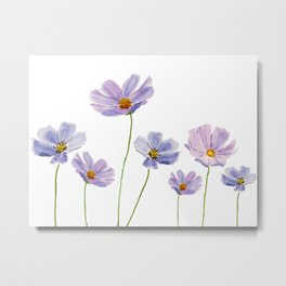 purple cosmos 2 Metal Print