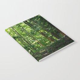 Pine tree woods Notebook