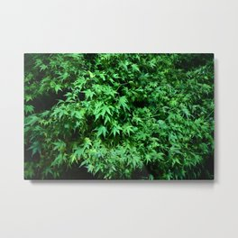 Military support Glow Japanese Maple Metal Print
