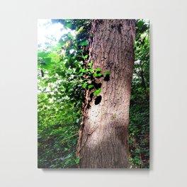 treelight Metal Print