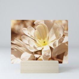 Delicate magnolia Mini Art Print
