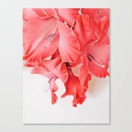 Coral Cascade Canvas Print