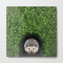 Little Hedgehog in the Hedge Metal Print