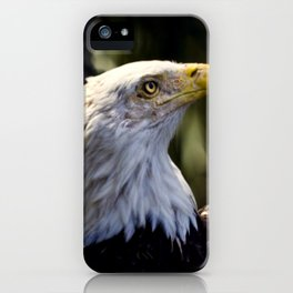 Proud Bald Eagle iPhone Case